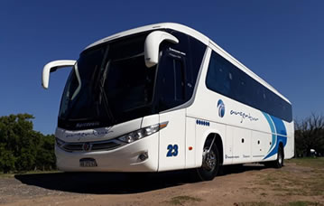 buses_45